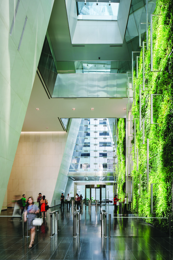 The living green wall